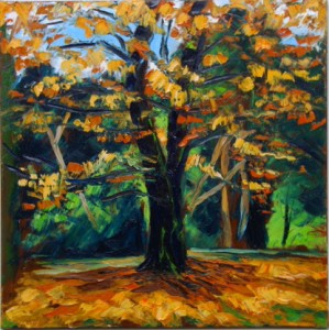 """Autumn Beech"" by Rod Coyne, 80x80cm, oil on canvas."